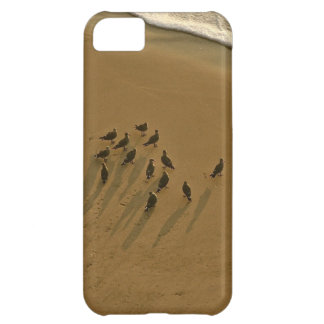 FAMILY REUNION OF SORTS AT THE BEACH iPhone 5C CASE
