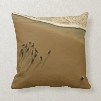 FAMILY REUNION OF SORTS AT THE BEACH PILLOWS