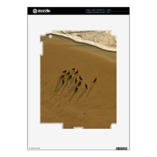 FAMILY REUNION OF SORTS AT THE BEACH iPad 2 DECAL