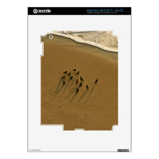 FAMILY REUNION OF SORTS AT THE BEACH DECAL FOR iPad 3