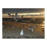 Family Reunion on the Beach Seagull Evening Sunset Card