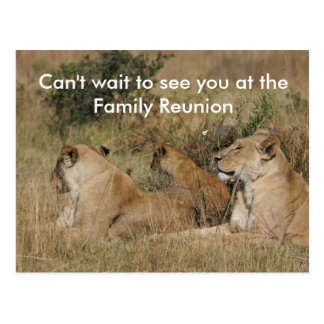 Family Reunion Postcards