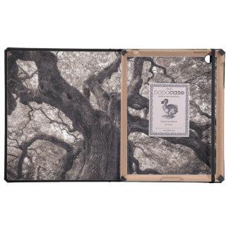 Family Tree Nature's Old Mighty Wisdom iPad Cases