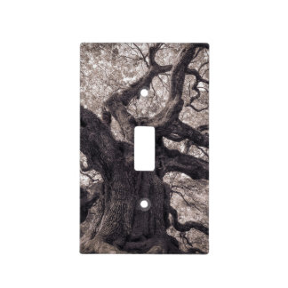 Family Tree Nature's Old Mighty Wisdom Light Switch Cover