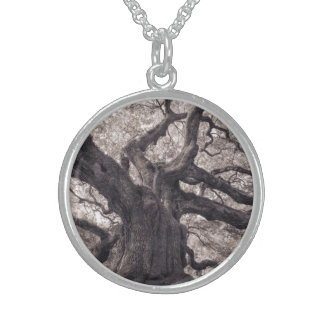 Family Tree Nature's Old Mighty Wisdom Pendant