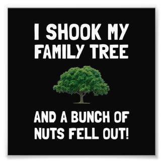 Family Tree Nuts Photo Print