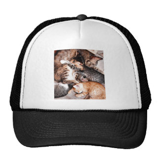 Family Trucker Hat