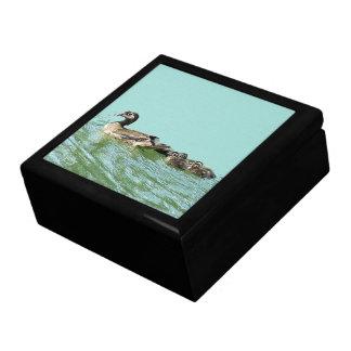 Family Wood Duck Birds Wildlife Ducklings Gift Box