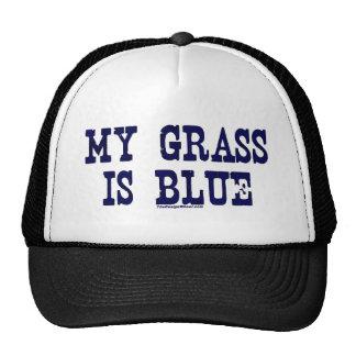 Famoso mi hierba es azul gorros