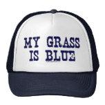 """""""Famoso"""" mi hierba es azul Gorros"""