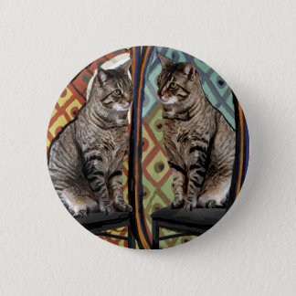 Famous Artists Cats Cat In A Mirror Pinback Button
