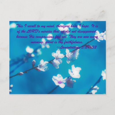 Famous Bible Verses on Famous Bible Verses Post Card From Zazzle Com