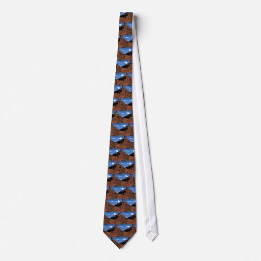 Famous buttes rock formation necktie