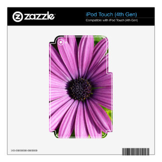Famous Fair Classical Hard-Working iPod Touch 4G Decals
