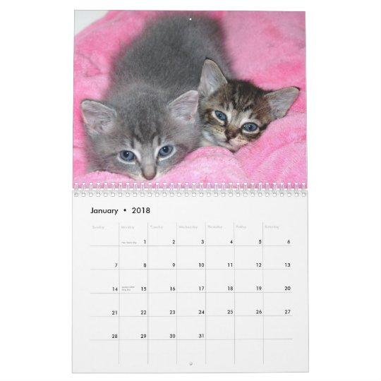 Famous Miracle Manx Calendar