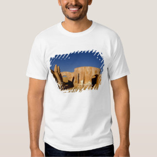 Famous movie set of Star Wars movies in Sahara Shirt