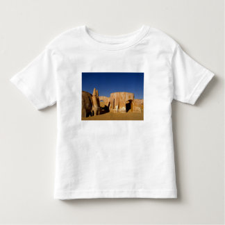 Famous movie set of Star Wars movies in Sahara Toddler T-shirt