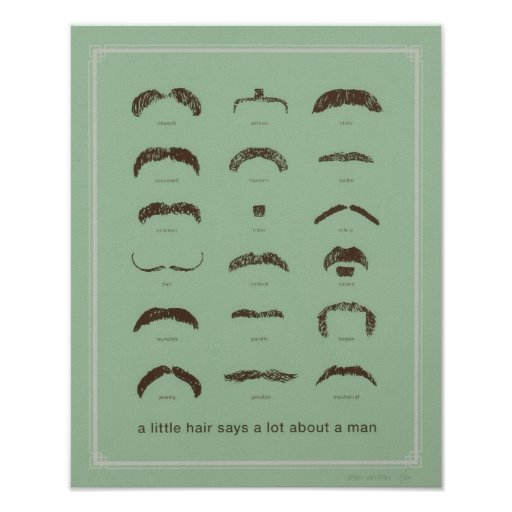 Famous Mustaches Poster