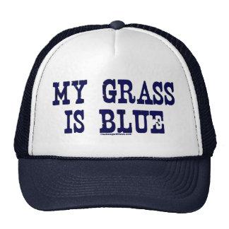 """Famous"" My Grass Is Blue Trucker Hat"