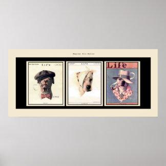Famous Pit Bulls Poster