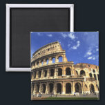 """Famous ruins of the Coliseum in Rome Italy Magnet<br><div class=""""desc"""">COPYRIGHT Bill Bachmann / DanitaDelimont.com 