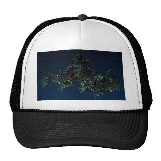 Fan 1 hat