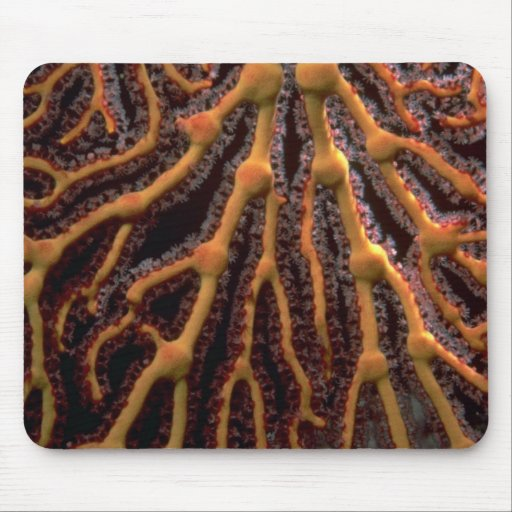 Fan de mar de oro tapetes de raton