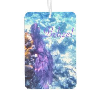 Fan de mar púrpura