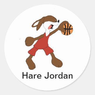 Fan de Michael Jordan del conejo del dibujo Pegatina Redonda