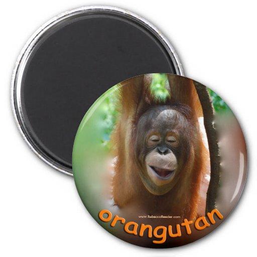 Fan del funcionario del orangután imán redondo 5 cm