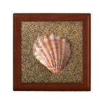Fan rosada Shell Caja De Recuerdo