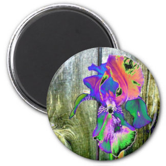 Fanciful Flowers #2 Magnet - Iris
