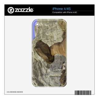 Fanciful toadstool shape of eroded red and white iPhone 4 decals