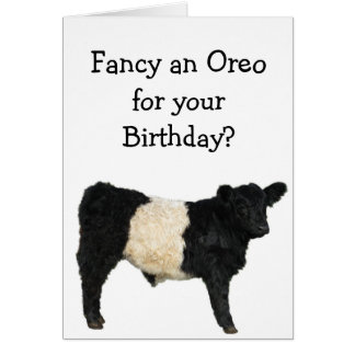 Fancy an Oreo? Belted Galloway Cow Card