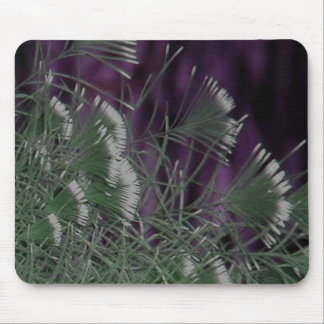 Fancy Bird Feathers Mouse Pad