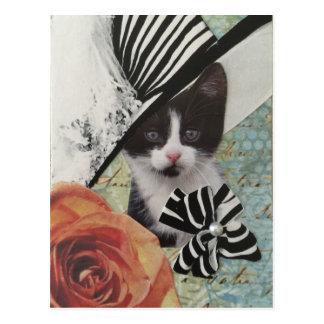 Fancy Cat Postcard