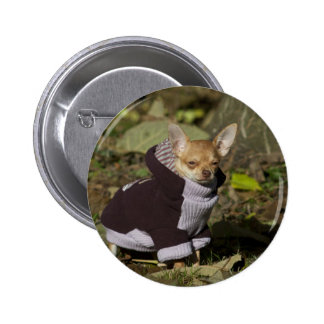 Fancy Chihuahua Button