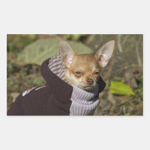 Fancy Chihuahua Rectangular Sticker