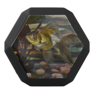 Fancy Fantail Goldfish Black Bluetooth Speaker