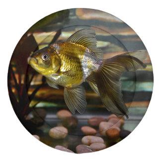 Fancy Fantail Goldfish Button Covers