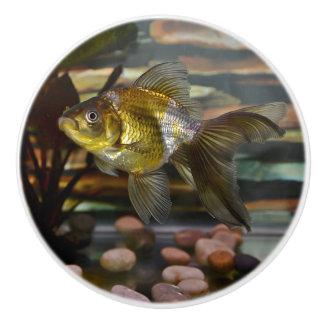 Fancy Fantail Goldfish Ceramic Knob