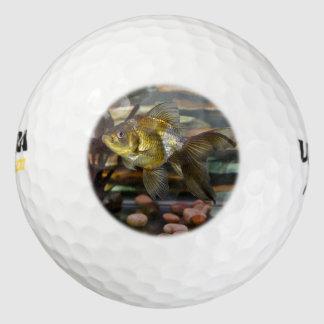 Fancy Fantail Goldfish Golf Balls