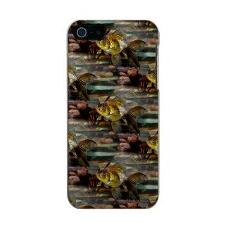 Fancy Fantail Goldfish Metallic Phone Case For iPhone SE/5/5s