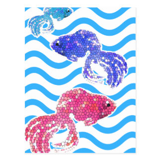 fancy fish postcard