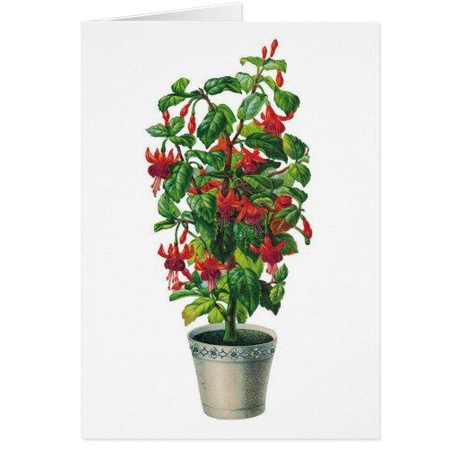 Fancy flower pot notecard zazzle for Fancy flower pots