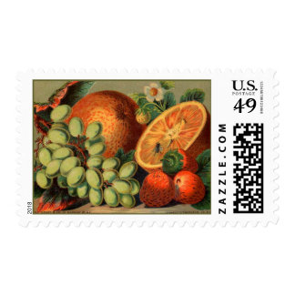 Fancy Fruits Postage Stamps
