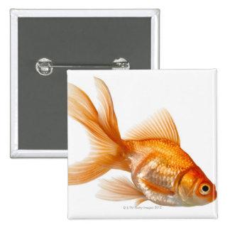 Fancy Goldfish Pins