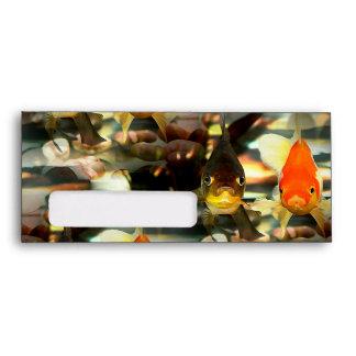 Fancy Goldfish Faces Watercolor Image Envelope