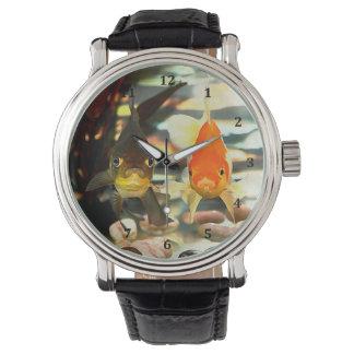 Fancy Goldfish Faces Watercolor Image Watch