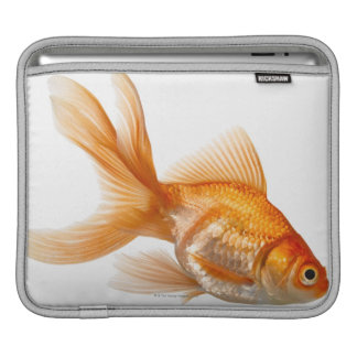 Fancy Goldfish Sleeves For iPads